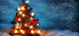 Božićni sajam otočnih proizvoda u Tkonu 21.12.2014.