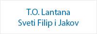 sponzori_to_lantana